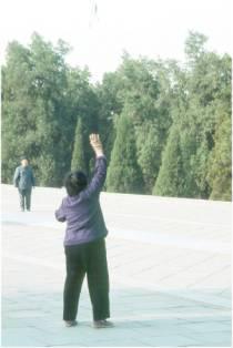 Qigong - Übungen im Freien